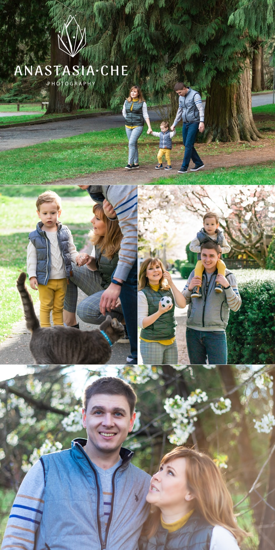 Cherry blossoms family photo shoot in New Westminster