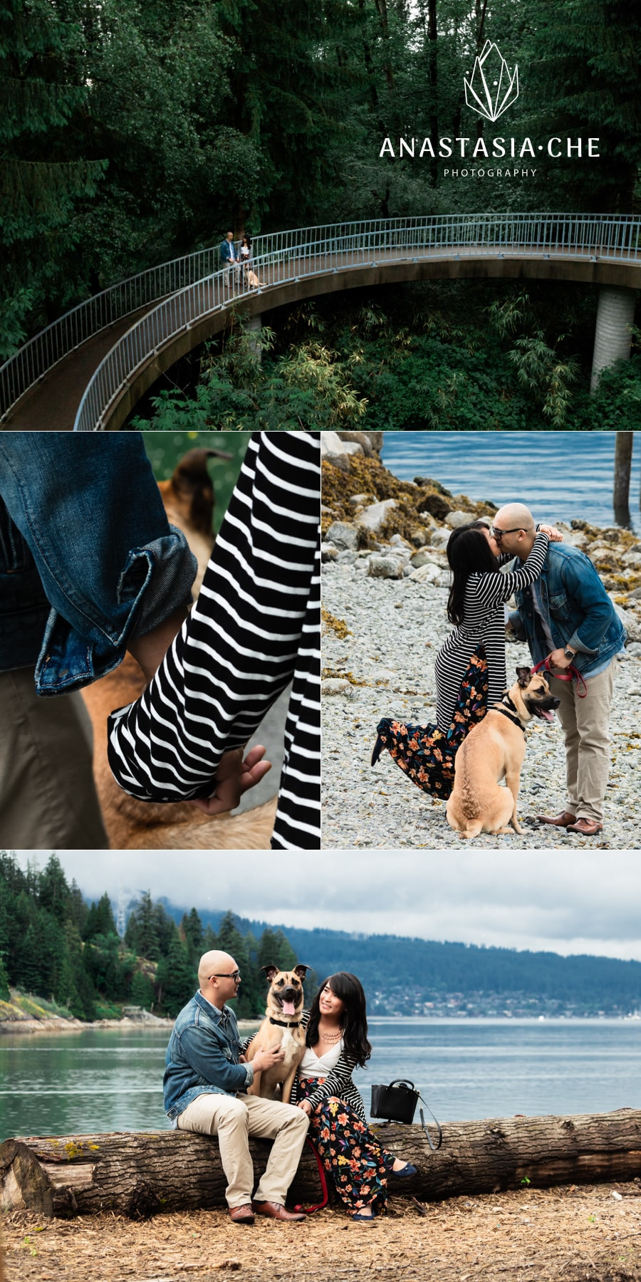 Couples photo session on a beach with their dog